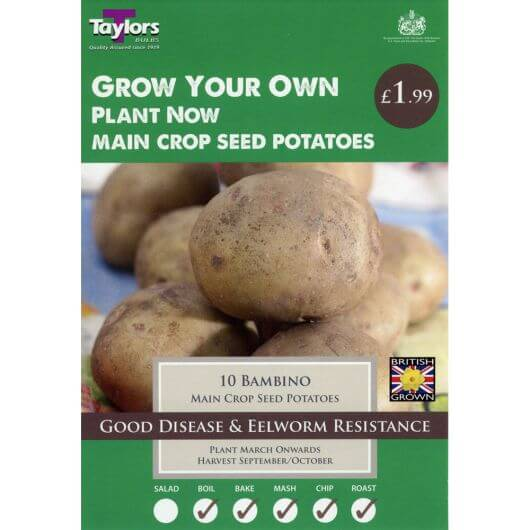 Taylors Seed Potato Starter Pack - Bambino Main Crop (10)