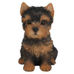 See more information about the Pet Pals Yorkshire Terrier Pup F