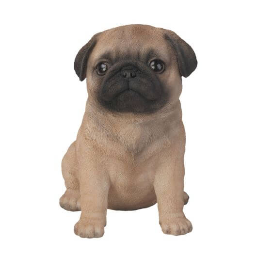 Pet Pals Pug Puppy F