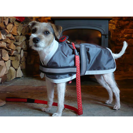 Petface Dog Coat 30cm Oxford Reflective