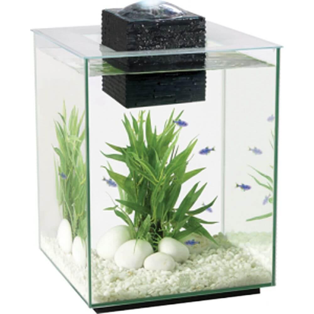 Fluval chi 2 19l aquarium set garden store online for Online aquarium fish store