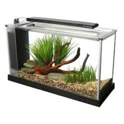 See more information about the Fluval Spec 19L