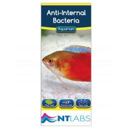 See more information about the NT Labs Anti Internal Bacteria