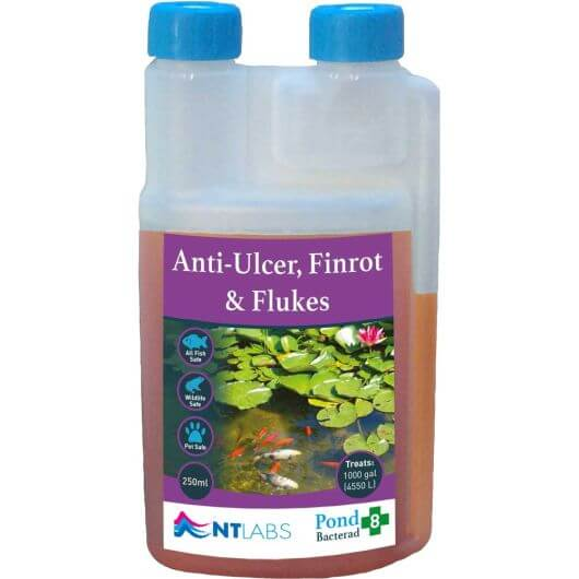 NT Labs Bacterad - Anti-ulcer, Finrot and Flukes 250ml