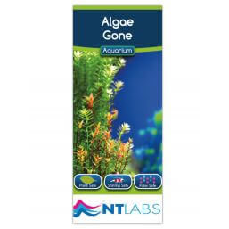 See more information about the NT Labs Algae Gone