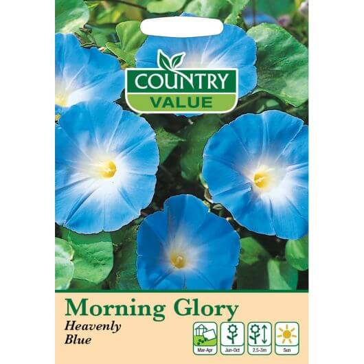 Morning Glory Heavenly Blue CV MF Seeds