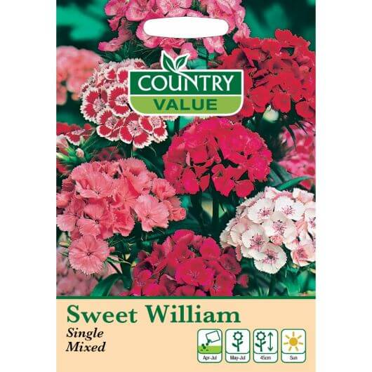 Sweet William Single Mixed CV MF Seeds