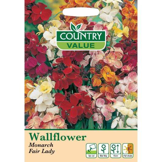 Wallflower Monarch Fair Lady CV MF Seeds