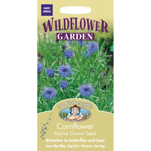 Cornflower -MF Wild Flower Seeds