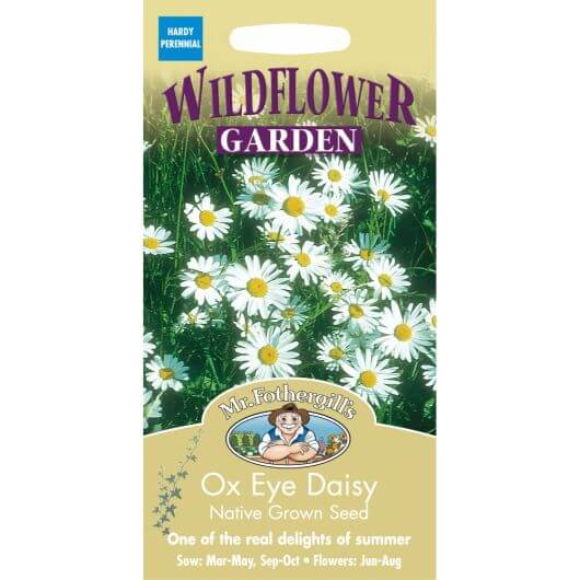 Ox Eye Daisy MF Wild Flower Seeds