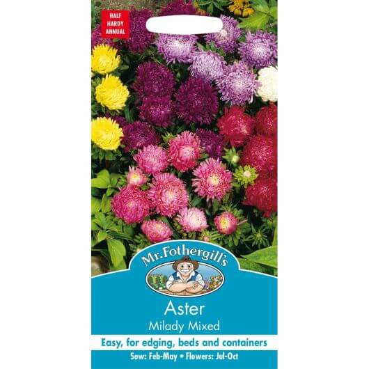 Aster Milady Mixed MF Seeds