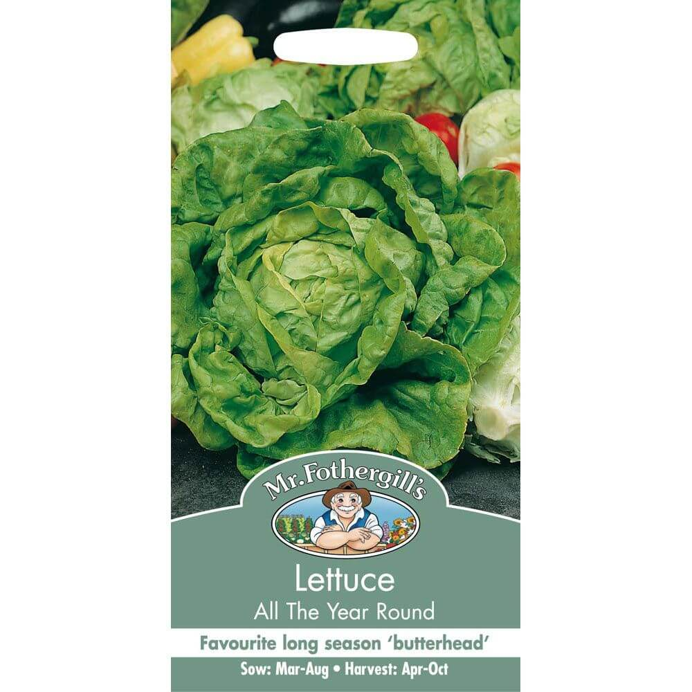 Lettuce All The Year Round MF Veg Seeds