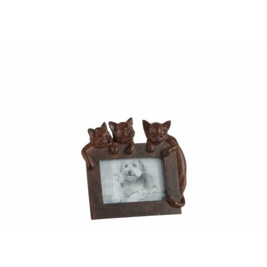 3 Cat Photoframe - Dark Brown