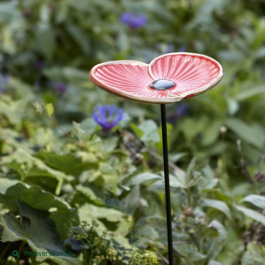 Cast Iron Poppy Feeder in Box