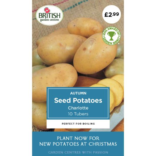 Autumn Seed Potatoes - Charlotte