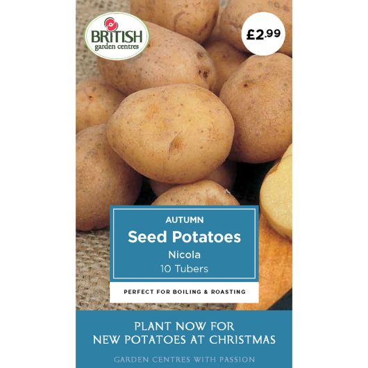 Autumn Seed Potatoes - Nicola
