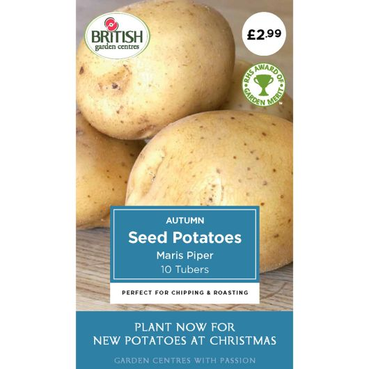 Autumn Seed Potatoes - Maris Piper