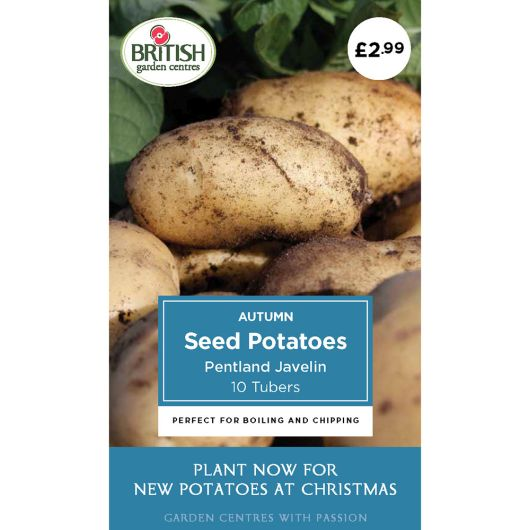 Autumn Seed Potatoes - Pentland Javelin