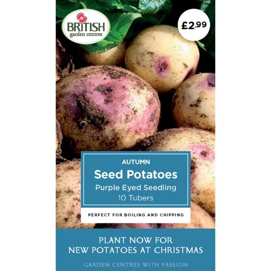 Autumn Seed Potatoes - Purple Eyed