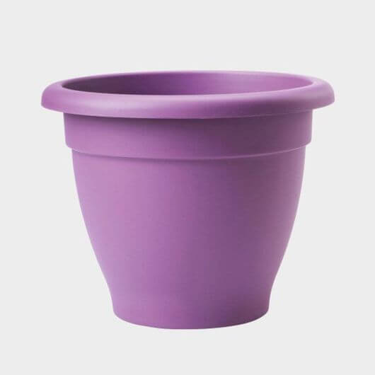 Essentials Planter Lavender - 33cm