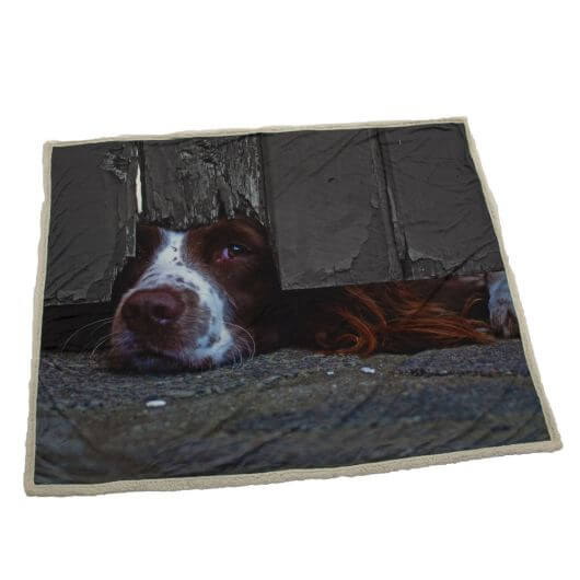 Country Matters Soft Touch Throw - I Spy Spaniel