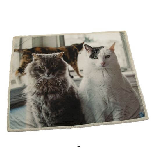 Country Matters Soft Touch Throw - Cat Trio