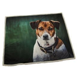 See more information about the Country Matters Soft Touch Throw - Amber Jack Russel