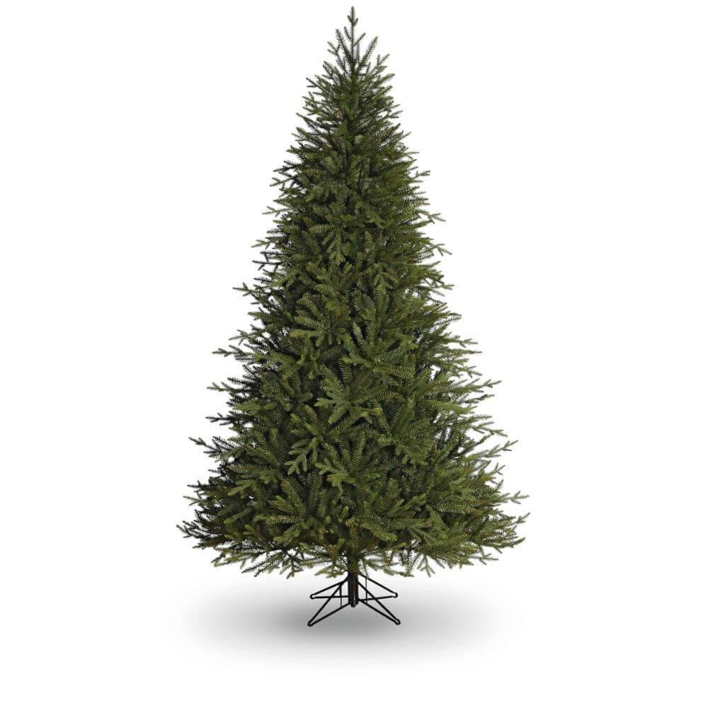 Christmas Tree In Garden: 7.5ft Hemlock Pine Christmas Tree