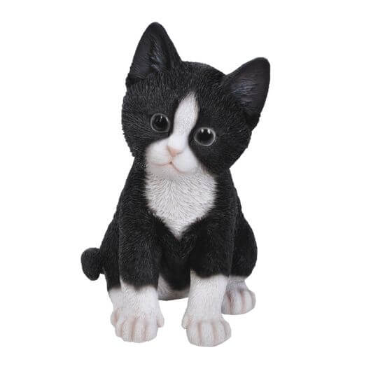 Pet Pals Kitten Black/White F