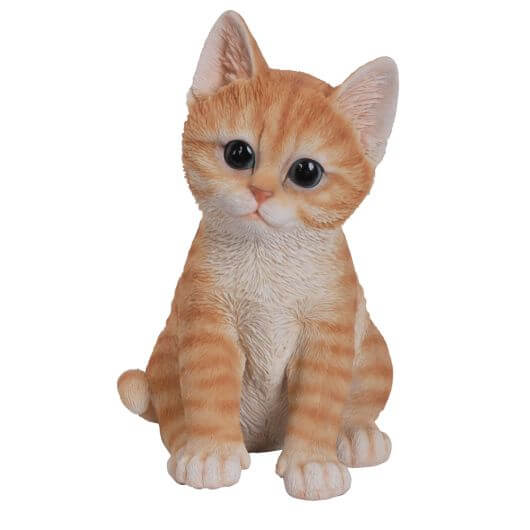 Pet Pals Kitten - Ginger F