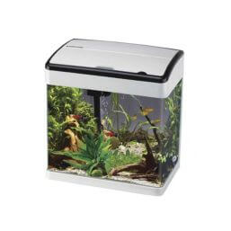 See more information about the Betta Lifespace H3 Aquarium - White/BlacK