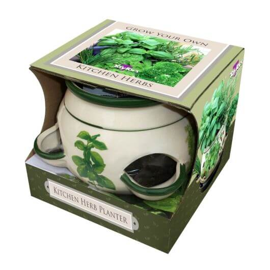 Taylor's Bulbs Grown Your Own Herbs - Kitchen Planter