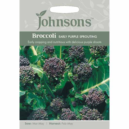 Johnsons Broccoli Early Purple Sprouting