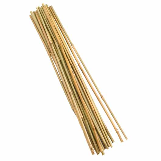 Bamboo Canes - 120 cm bundle of 20